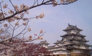 Himeji Panorama by Lianthanis