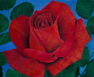 Rose I by KainVK