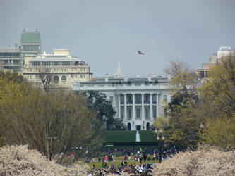 White house by AGS05