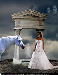 The bride and the horse by Lynathia