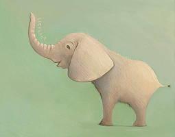 Elephant by TinyPilot