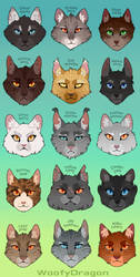 Thunderclan Medicine Cats by WoofyDragon