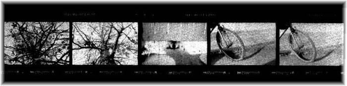 Film Strip 2 by MiniWookie