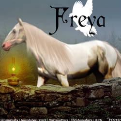 Freya2 by Aconitira