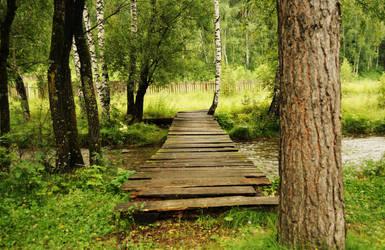 The bridge over the river by Korolevatumana