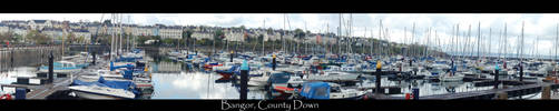 Bangor , County Down , by Affiliation