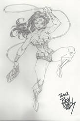 Wonder woman commission by Dogsupreme