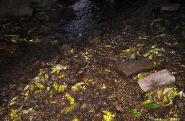 Smelt Brook by tsukiyuuki