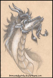 Dragonface by ImmortalPanda