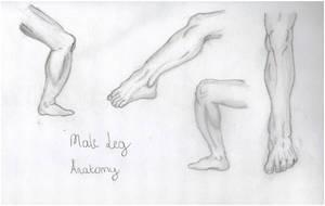 Male Leg Practice by lawlaw06