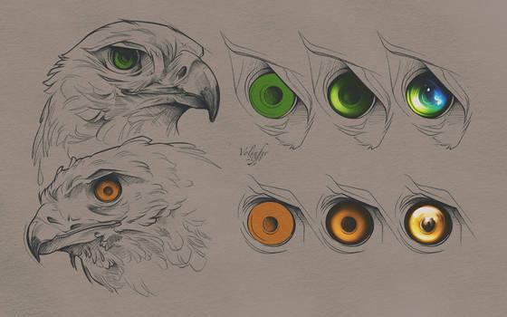 Birds of Prey Eyes Tutorial (PSD Included) by Volinfer