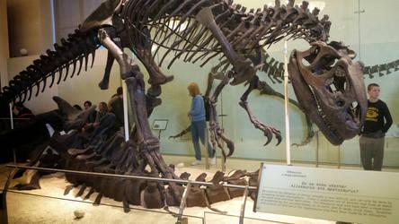 Last Photo of the Iconic Allosaurus Skeleton by Haxorus54