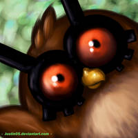 Hoothoot by Justin05
