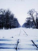 Snow Trail by LyraWhite