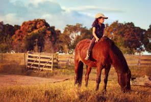 enough with saddles II by LyraWhite