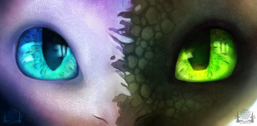 Lightfury Nightfury by Xurryls