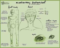 +Anatomy Tutorial+ by nayruasukei