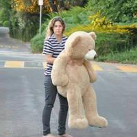 My Girl Bear Part 2 by BroadwayBound23