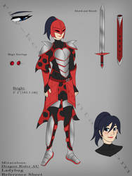 Rider Marinette Reference (Dragon Rider AU) by Ray-Ken