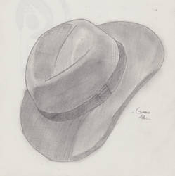 Fedora by ItWasHisSled