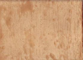 Wallpapersession 07 by kleinerewoelfin