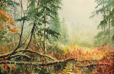 Autumn Forest Watercolor by Entar0178