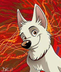 Bolt by Synthucard