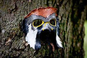 American Kestrel Leather Mask by OsborneArts