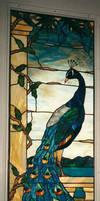 Stardust's Peacock by JimSTARDUST