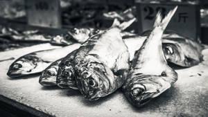 Hong Kong Fish Market by ChrisReach