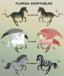 Florida Equine Adoptables [5 remaining] by the-renegade