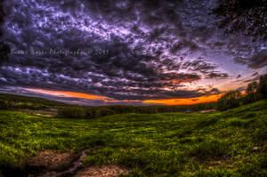 Spring Sky by butterphoto