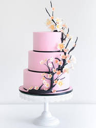 Pink Branch Cake by cococakes