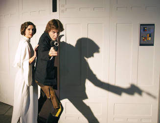 Han and Leia by Applenaut