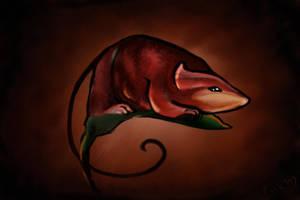 szczur by krysiaida