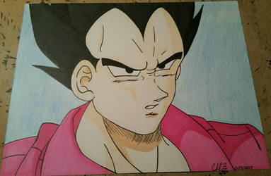 Pretty In Pink Vegeta  by Aerith-De-Alexandria