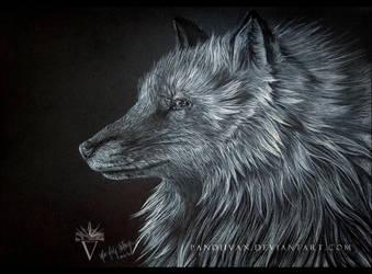Black Paper Drawing: A Fox, looking like a wolf. by PandiiVan