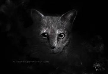 Black Paper Drawing: Lurking cat at night. by PandiiVan