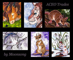ACEOs - Mousalopes and Friends by MoonsongWolf