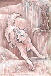 Trust Gravity by MoonsongWolf