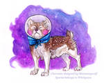 Space Pup Sushi Dog by MoonsongWolf