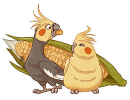 Corn Cockatiel by Seanica