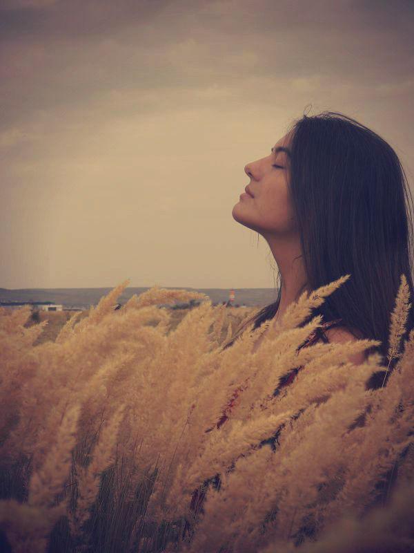 Dream by anniebn