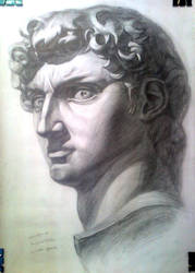 David Michelangelo by Jane-Boltrushko