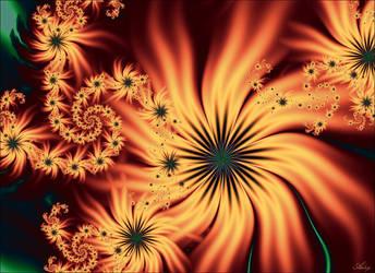 Orange flowers 2013 by adrymeijer