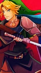 Link from Hyrule Warriors by crazyfreak