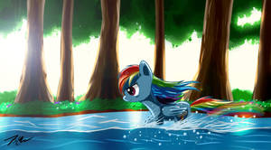 Rainbow Dash in Forest by Camaine