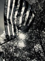 Patriotic love by angeldream