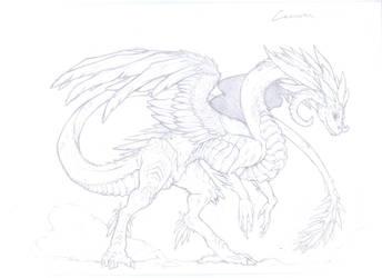 Cams Dragon sketch by Miss-Yazriel