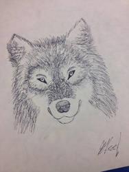 Wolf Sketch by Winter21244
